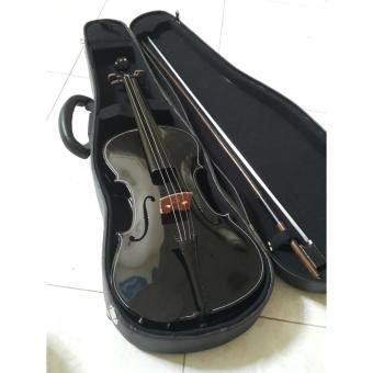 Biola / Violin Full Set Plus Hardcase 4/4 Black