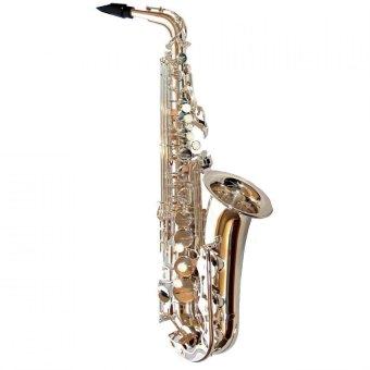 Yamaha Alto Sax YAS 480S - Silver Dengan Case