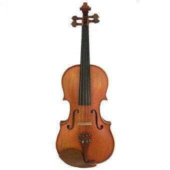 Christian Bach Violin / Biola CB 300 - Wood