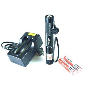 Briday 303 Green Laser Pointer Burning Laser Beam Black(INTL)