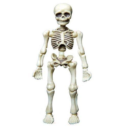 harga Re-ment - Pose Skeleton Human Skeleton - Small Lazada.co.id