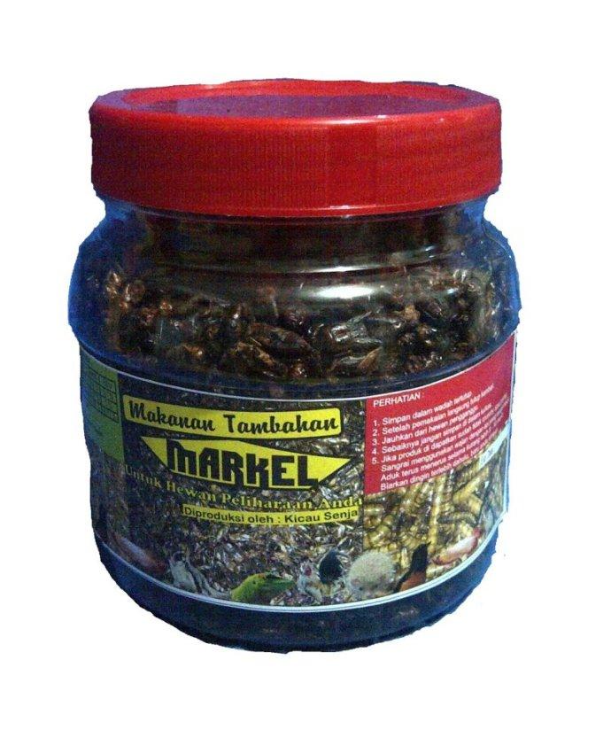 harga Markel extra fooding untuk burung kacer Paket 1 Lazada.co.id
