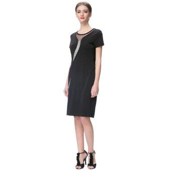 Anself Elegant Women Dress Mesh Round Neck Short Sleeve Back Zipper Solid Color Bodycon Dress Black - Intl