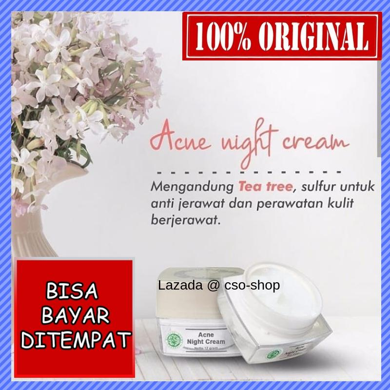 Cream Malam Acne Ms Glow / Acne Night Cream MsGlow / Krim Malam / Cream Penghilang Jerawat @ cso-shop