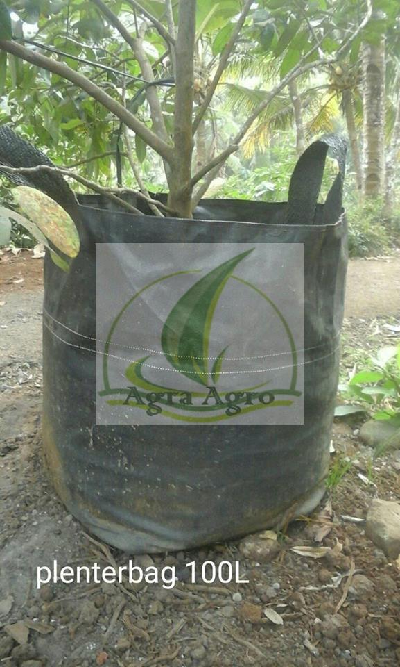 Fitur Planter Bag 28 Liter Hijau Dan Harga Terbaru - Info Harga Dan ... f4db597aac