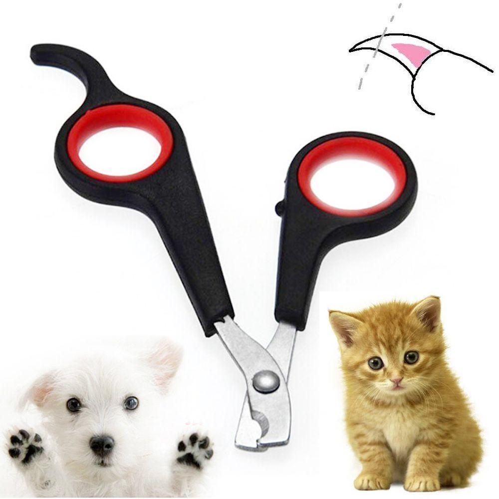 Gunting Kuku Kucing Import Stainless - Gunting Kuku Anjing - Pet Nail Trimmer  Clipper a3ba7c77df