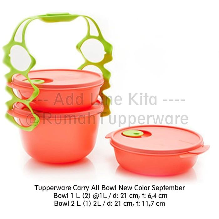 Tupperware Carry All Bowl New Color September - Xfdugh