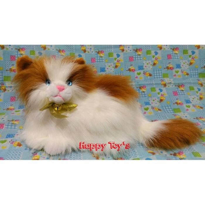 Boneka Kucing Anggora Lucu - Zwdbqm