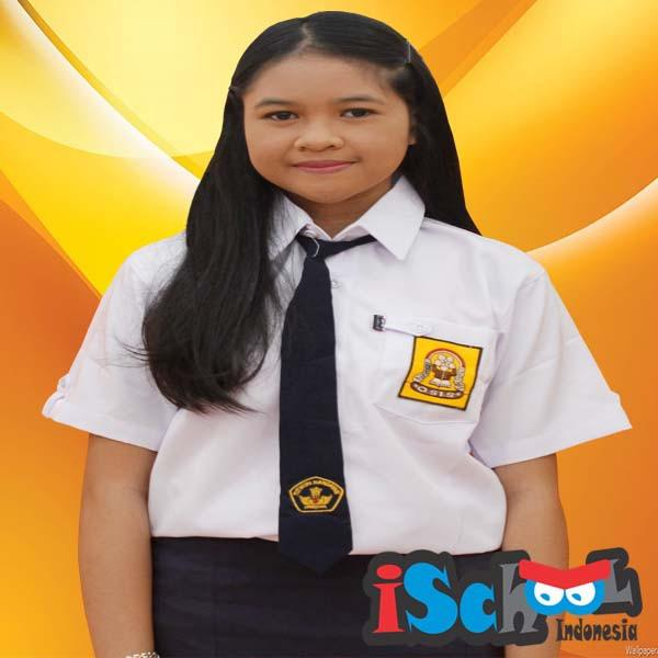 Ulasan Tentang Ischool Baju Sekolah Smp 13 15 Lengan Pendek