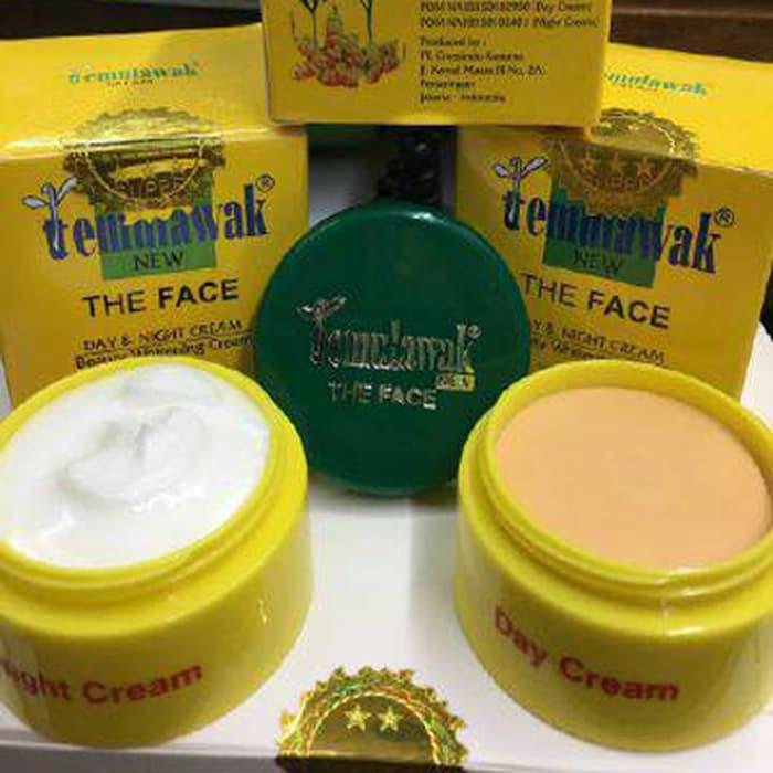 Cream Temulawak The Face Original BPOM Day Cream + Night Cream - 3