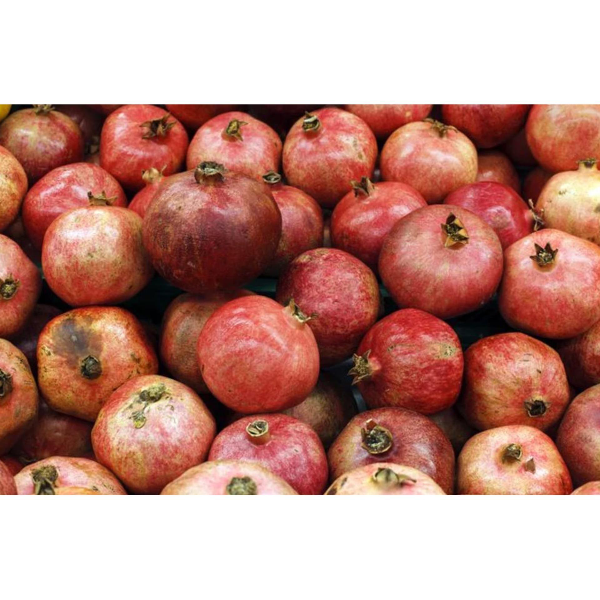 Fresh Pomegranate Buah Delima Merah Segar