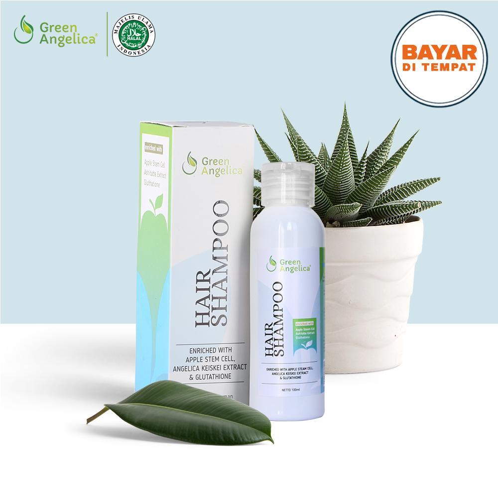 Shampo Penumbuh Rambut Herbal Mengatasi Rambut Rontok   Anti Ketombe 100%  Halal   BPOM Green fac37fe5b3
