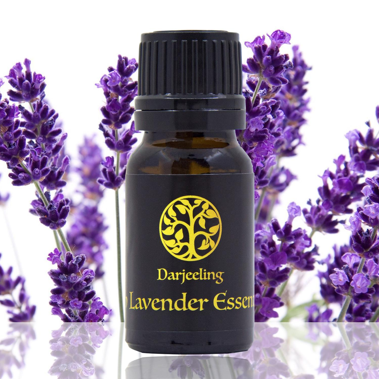 10ml French Lavender Essential Oil Minyak 100% Alami Young Living
