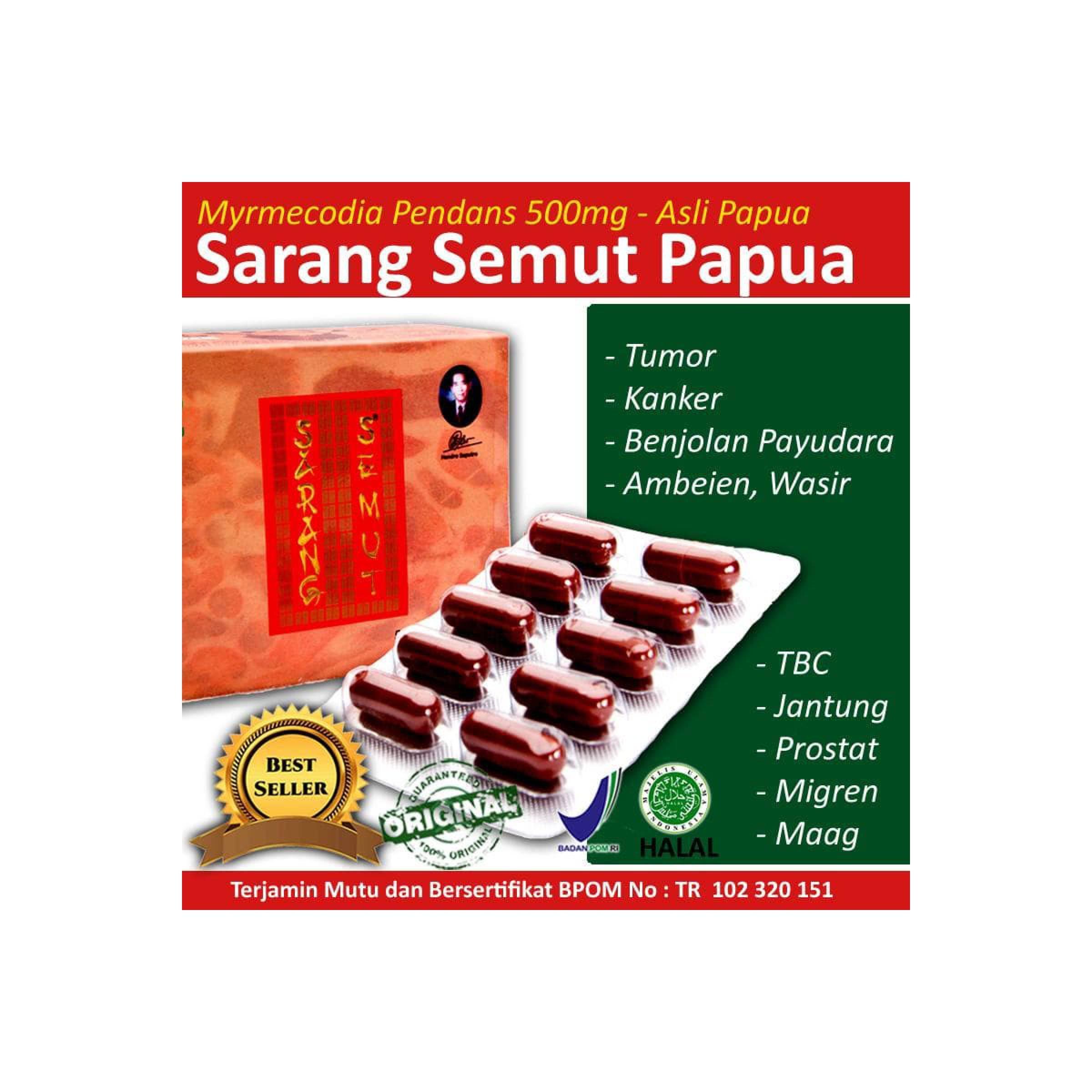 ... Obat Herbal Sarang Semut Dari Papua untuk Jantung dan LiverIDR200000 Rp 200 000