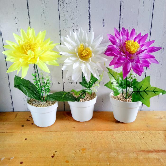 Bunga Kamboja Rambat Artificial Bunga Free Bingkai Putihpagar Putih ... 1d5cfc2463