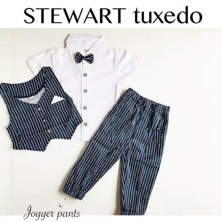 Setelan Tuxedo Anak Cowok 4 In 1 Steward Rompi Anak Baju Pesta 1 2 3 4 5 Tahun Baju Lucu Promo Beli 1 Gratis 1
