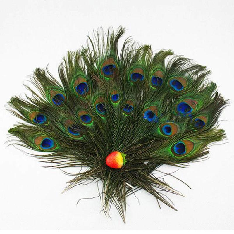 Jual Cepat Fang 100 Buah Bulu Ekor Burung Merak Alam Nyata Mata 8 12 Inci Tentang 23 30 Cm Warna Alami