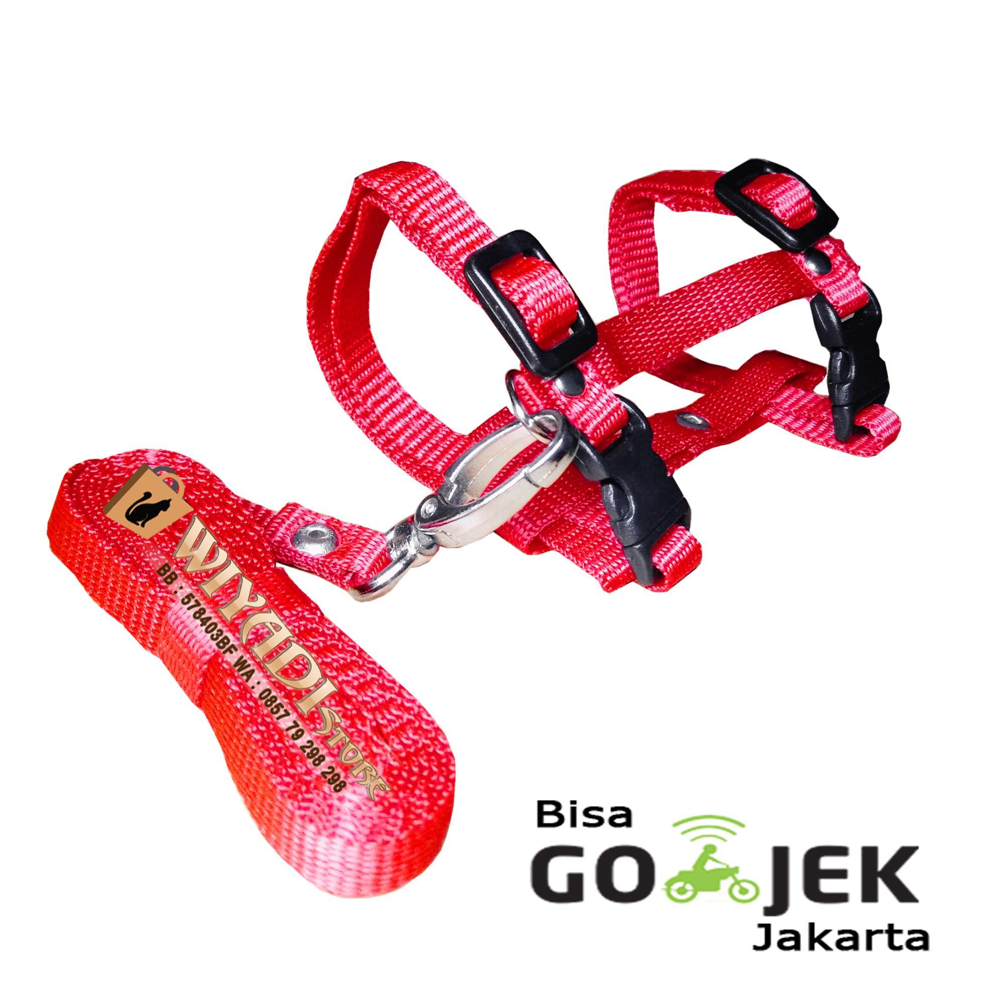 WiyadiStore - Tali Harness H Hewan Musang Kelinci kucing Iguana [Size M] - Merah