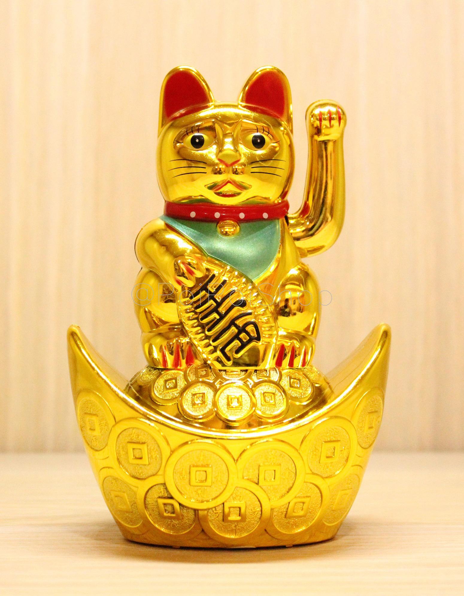 Download 76+  Gambar Kucing Rejeki Paling Keren HD