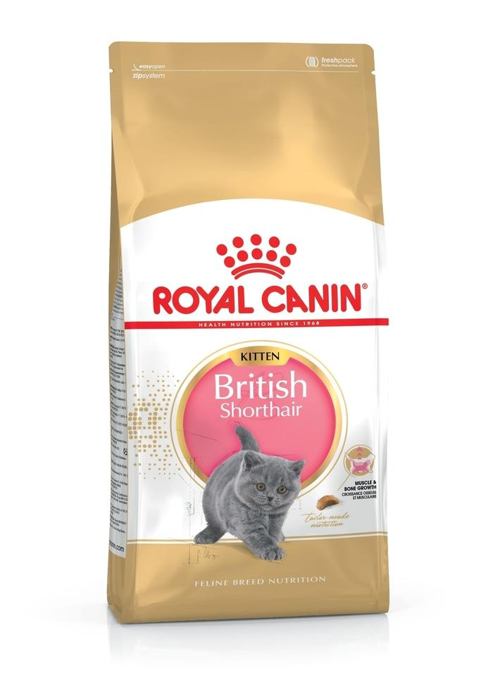 Makanan Kucing Royal Canin Kitten British Shorthair [2kg]