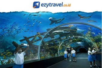 Harga Ezytravel Singapore S.E.A Aquarium Ticket [Dewasa/Adult]