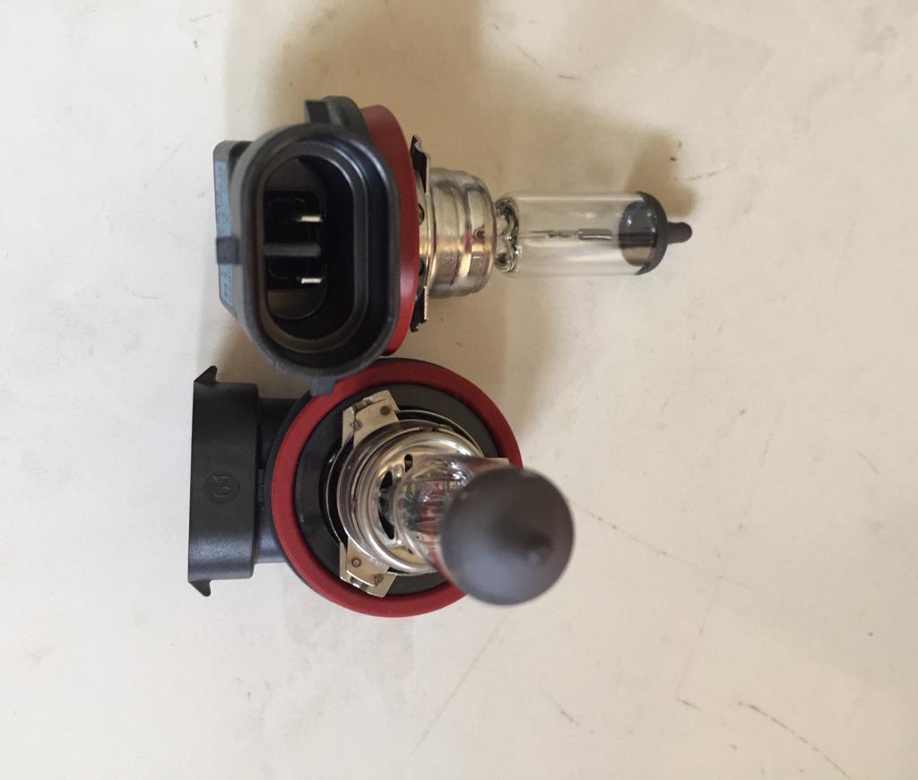 bohlam foglamp osram original h11 12v 2pcs