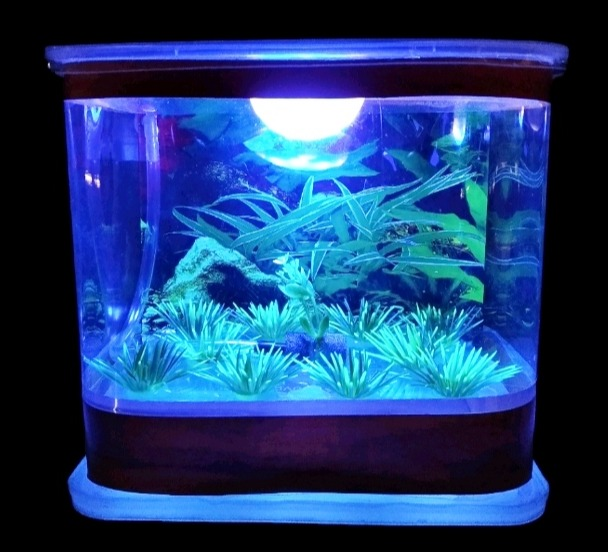 aquarium kotak mini  mesin oxygen lampu