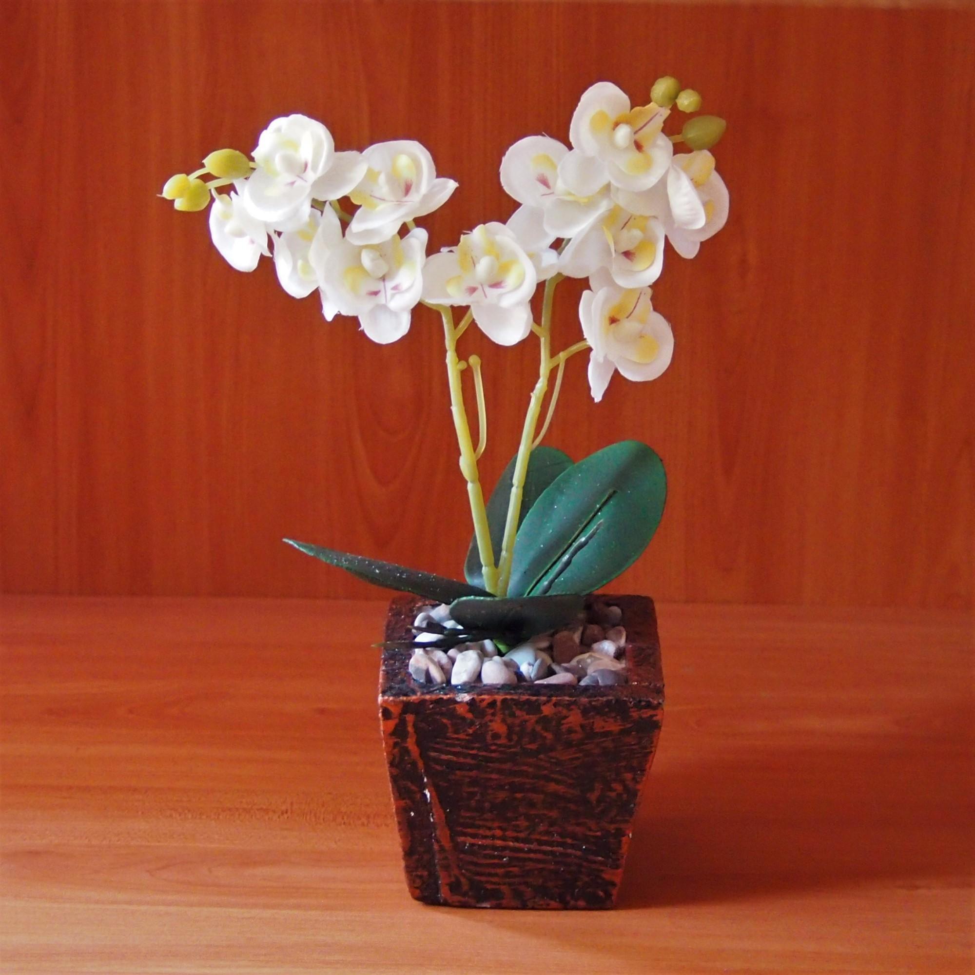 Bunga Dekorasi Dan Pajangan - Bunga Anggrek New Hiasan Plastik Bunga  Artificial e3513f6363