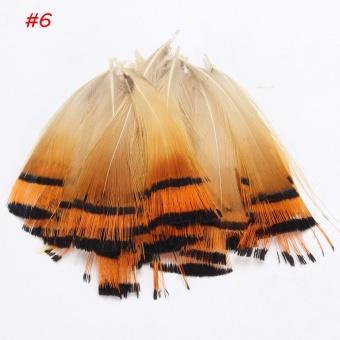20 Pcs Cantik Bulu Ekor Burung Alami Berbagai Macam 4-11 Cm Kerajinan Tangan Hiasan