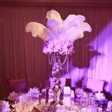... 50 Buah Grosir Bulu Burung Unta untuk Dekorasi Pernikahan - 4 ...