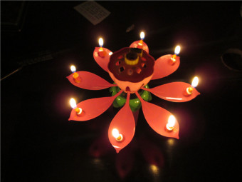 Harga Amazing Musical Lotus Flower Happy Birthday Gift Candle Musical Candle