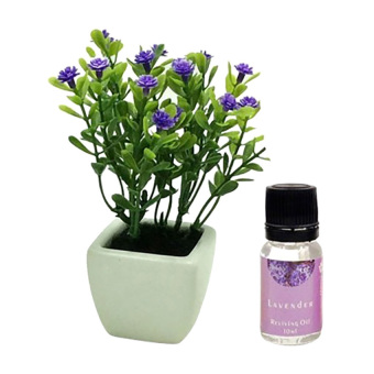 Harga Aromatalks Flower Pot Aromatherapy Diffuser 10ml with Oil Baby's breath - FL-02C - Lavender