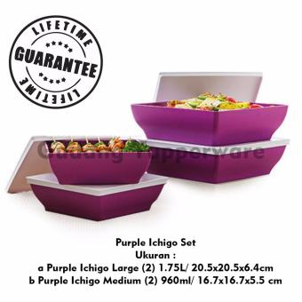 Harga Tupperware Purple Ichigo Set 4pcs