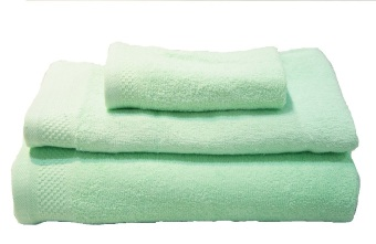 QuincyHome Quick Dry Towel - Green mint