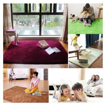 Shaggy Anti-selip Karpet Karpet Lantai Tikar/Cover 80x120 Cm (Kopi) .