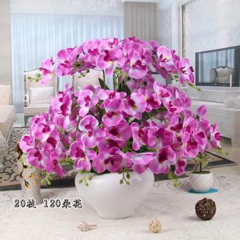 ... Simulasi pot bunga kering Phalaenopsis. Simulasi pot bunga kering Phalaenopsis. Flanel Merasa Parfum Hiasan Bunga Sutra ...