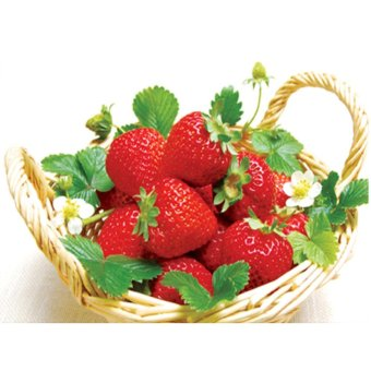 Strawberry 5D Diamond DIY Lukisan Kerajinan Kit Home Decor-Intl