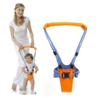 MoonWalk Walking Assistance - Alat Bantu Berjalan untuk Anak Baby Walker Alat Titah Bayi Apollo Bayi