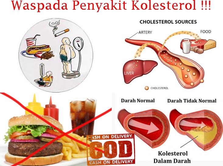 herbal ampuh untuk kolesterol  obat herbal kolesterol ampuh  kolesterol tinggi  100%  original