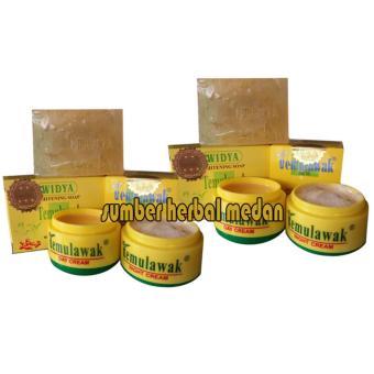 Temulawak Cream Day and Night Plus Sabun Widya Holo Emas - 2pcs