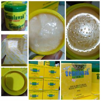 TEMULAWAK Day & Night Cream Malaysia Original 100%