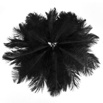 Harga 20pcs 25-30cm Natural Ostrich Feathers Great Decorations for Holiday /Party /Dress /Home (Black)