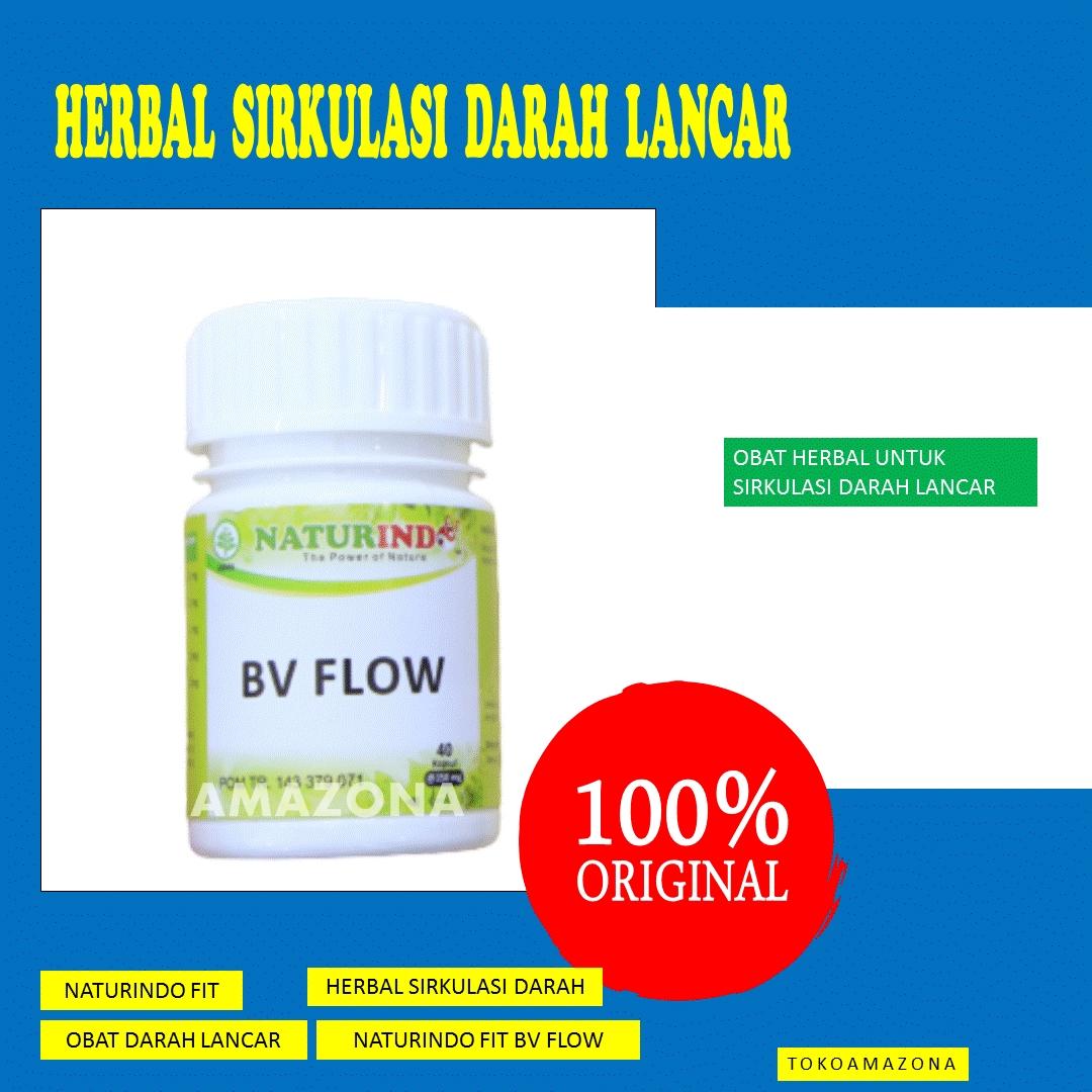 obat herbal untuk sirkulasi darah lancar