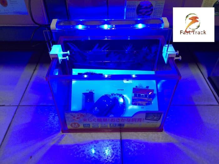 Update Harga Lampu LED Mini YP 30 Hari Ini