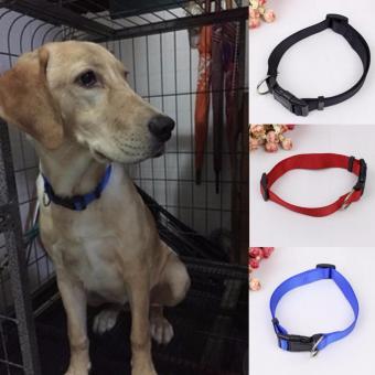Kalung Collar Anjing Nilon Hitam