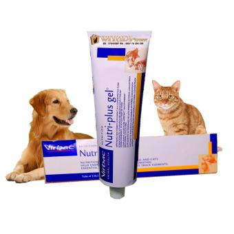 WiyadiStore - Vitamin Supplement Kucing Nutri-Plus Gel