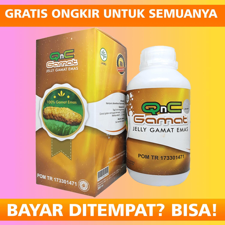 jelly gamat qnc original  100% ekstrak teripang emas