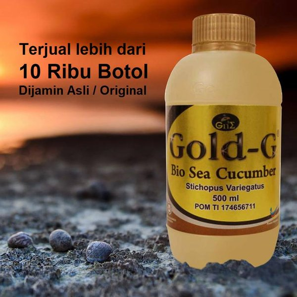 rh-jelly gamat gold g gne original 500ml besar sea cucumber