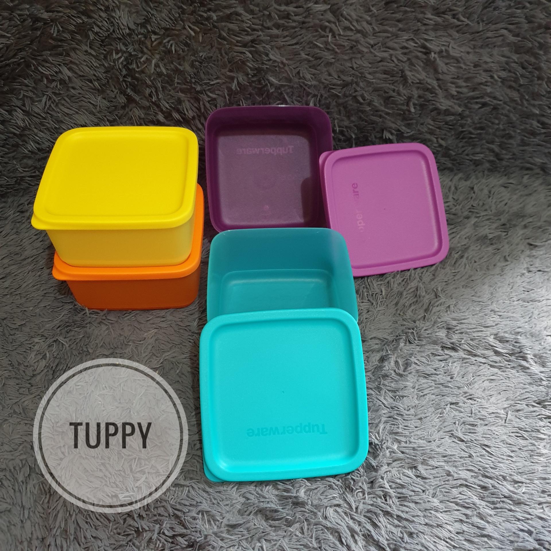 small summer (1) satuan wadah bekal kotak tupperware