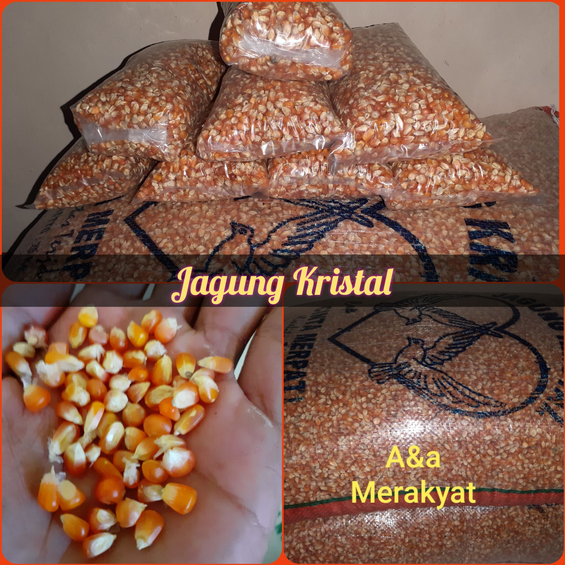 jagung kristal isi 1kg